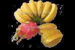 buahan